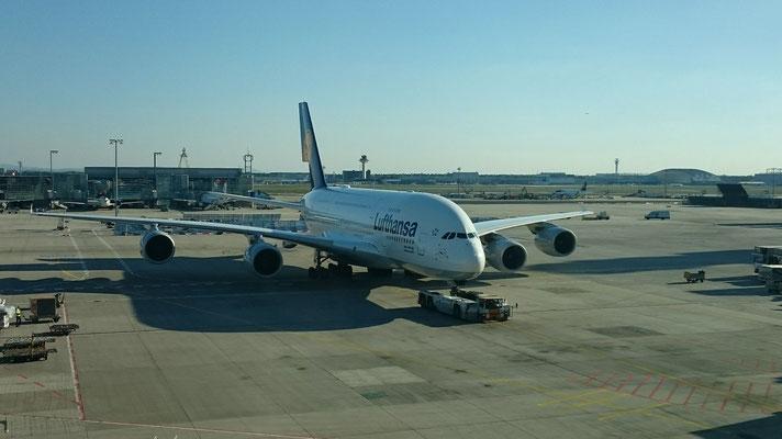 Der A380 von Lufthansa