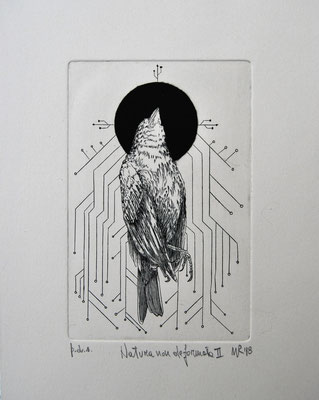 Natura non deformata II-Bulino su rame-cm.10x15-2018