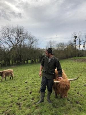 Grégoire carressant vache highland cattle à la ferme de la Millanchère