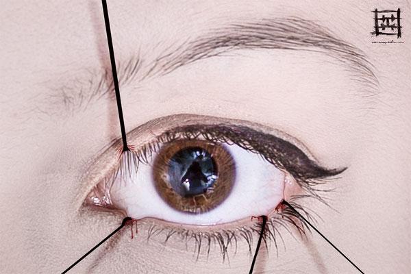 Pantifully curious (eye)