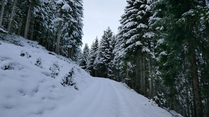 Ab 1.300m super Schneelage
