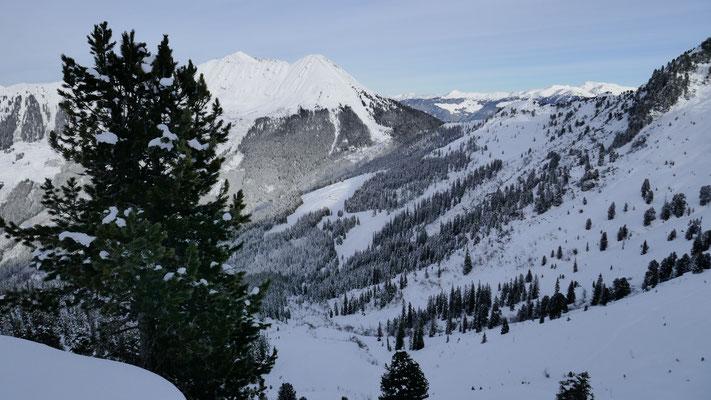 Taleinschnitt Karbach, drüben Schneebruggenalm