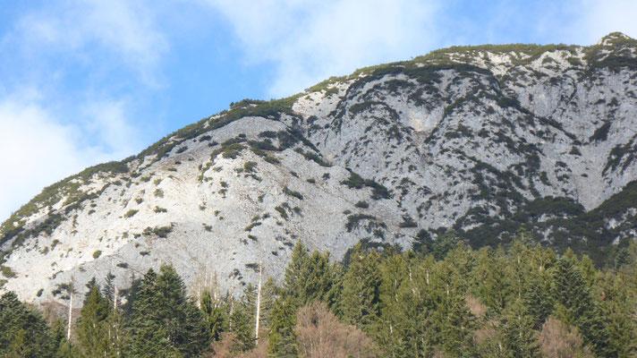 Aufstiegsgelände, meine Rinne etwa in Bildmitte leicht verdeckt; die Rinnen weiter östlich sind sehr wahrscheinlich anspruchsvoller