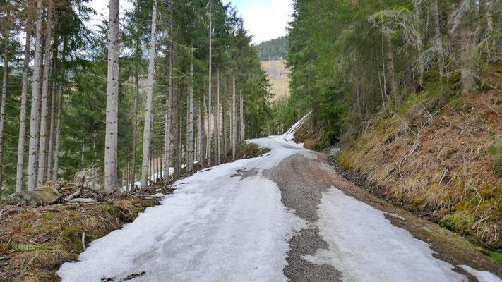 Grenzwertige Schnee-/Eisdecke am Forstweg