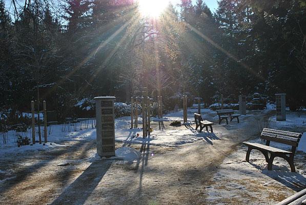 Kirschgarten im Winter