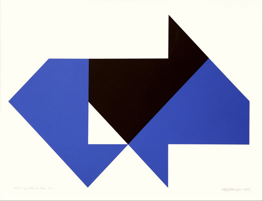 of 70 nr.: XIX - XXV, serigraphie 1973, 50 x 70 cm.  Preis:  400€ plus Versandkosten 9,50€