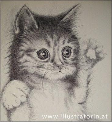 "Illustration - Tierportrait - ""Fellini"" - Doris Maria Weigl"