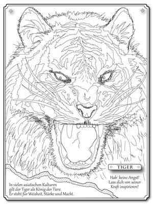 Illustrationen Doris Maria Weigl / Tiger Malbuch Farbenzeit