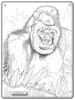 Illustrationen Doris Maria Weigl / Gorilla Malbuch Farbenzeit