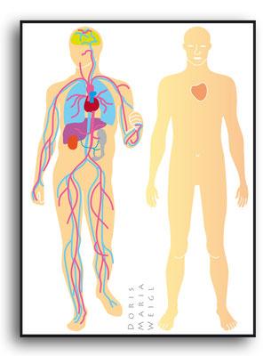 Blutkreislauf - Vektorgrafik - Illustrationen Doris Maria Weigl / Medizin
