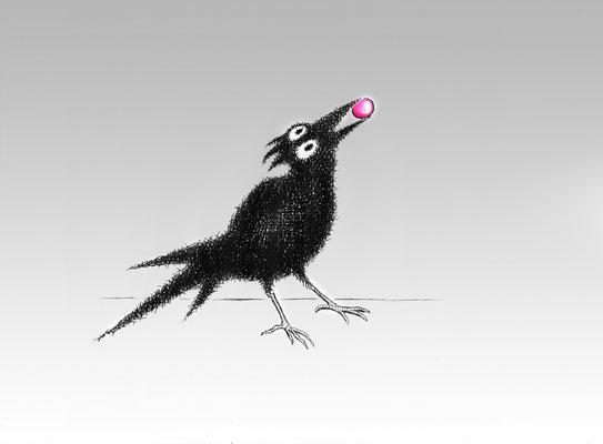 Krahvogel Wein mit Traube - Tusche - Illustrationen Doris Maria Weigl / Menü