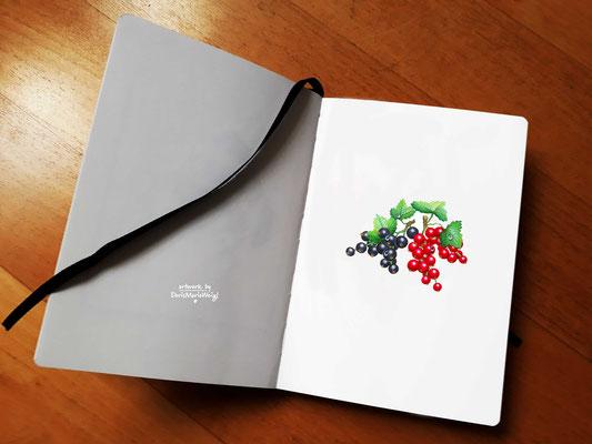"""Sketchbook - Illustration - Doris Maria Weigl - """"Früchte"""""""