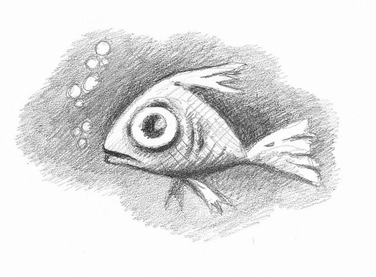 Illustrationen Doris Maria Weigl / Fisch