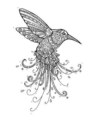 Kolibri - Malbuch Farbenzeit - Vektorgrafik - Illustrationen Doris Maria Weigl / Malbuch