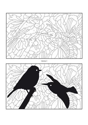Suchbild Vogel - Vektorgrafik - Illustrationen Doris Maria Weigl / Kinderbuch