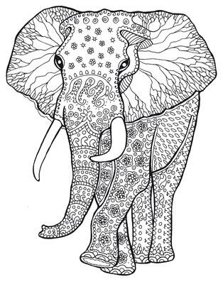 Illustrationen Doris Maria Weigl / Elefant Malbuch Farbenzeit