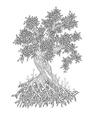 Baum - Malbuch Farbenzeit - Vektorgrafik - Illustrationen Doris Maria Weigl / Malbuch
