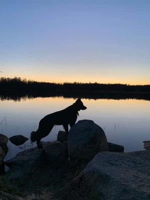 Freya geniesst ihr Leben in Schweden
