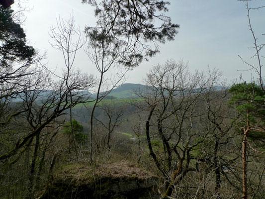 Blick von der Grossholz Hochebene auf den Wiesenberg