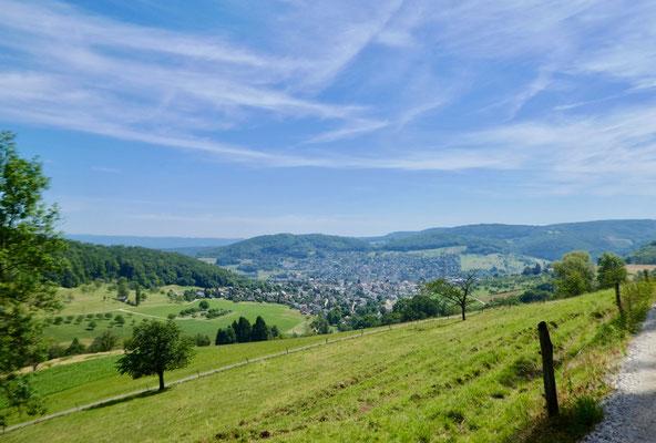 Blick über Frenkendorf / Füllinsdorf