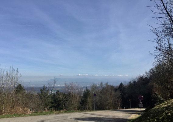 Blick von den Bergmatten zum Schwarzwald