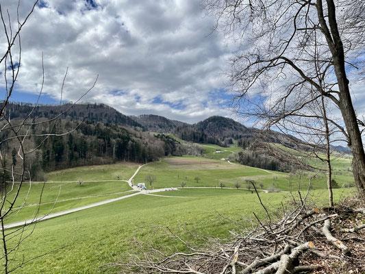 Blick über die Eichhöhe zum Ramstein
