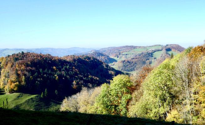 Blick zum Clos du Doubs