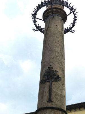 Zenobius-Säule, Darstellung der grünen Ulme