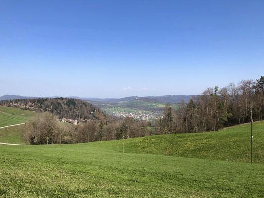 Blick über den Wasserberg nach Liesberg