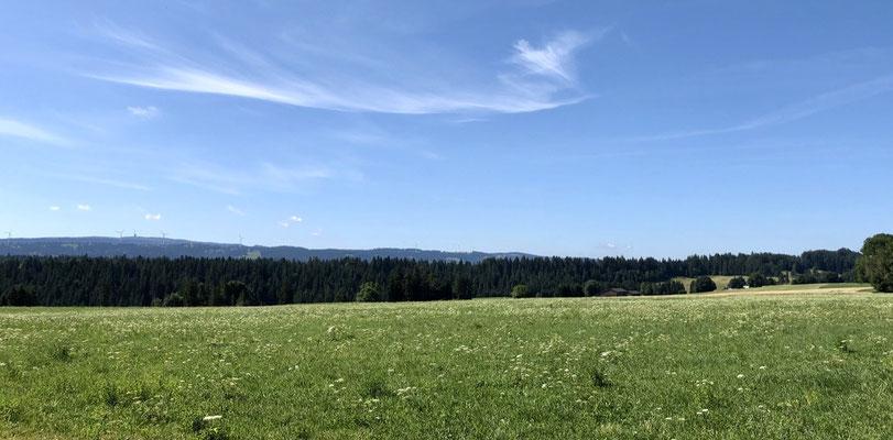 Im Hintergrund Mont-Crosin und Chasseral