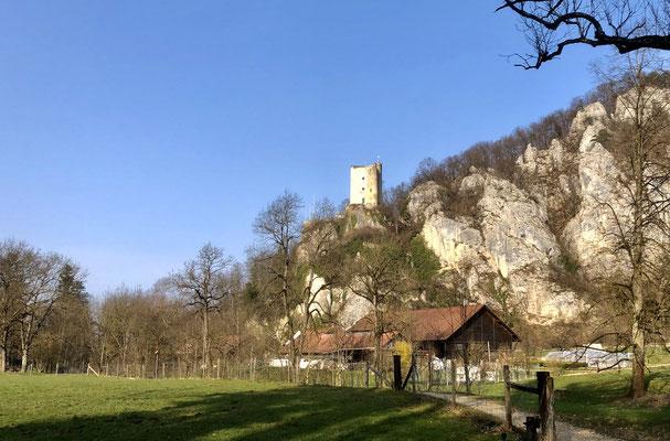 Schloss Thierstein