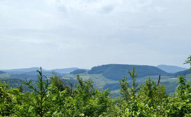 Blick vom Sunnenberg zur Farnsburg