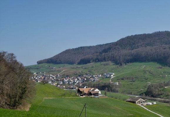 Blick auf Rickenbach