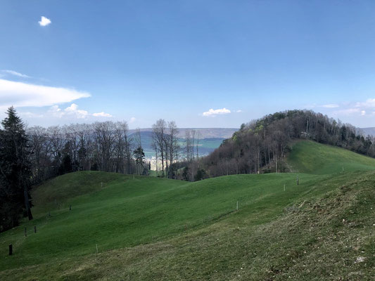 Blick vom Weg zum Wasserberg