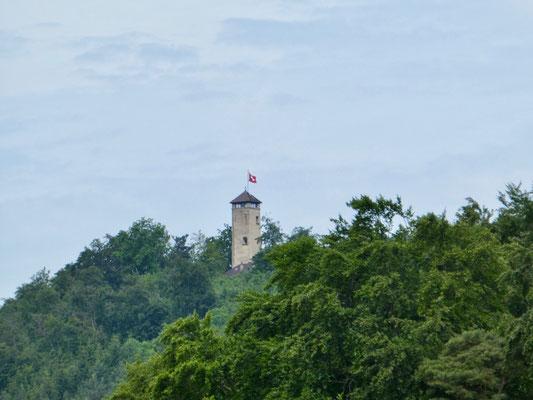 Turm auf dem Sunnenberg