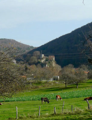 Blick auf das Chateau de Pleujouse