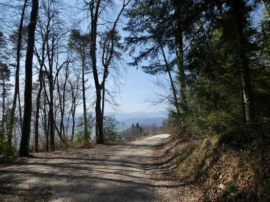 Auf dem Weg zum Burg Bischofstein