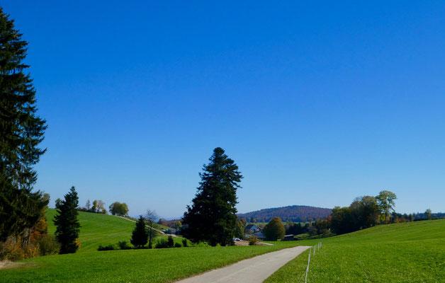 Oben auf dem Burgisberg