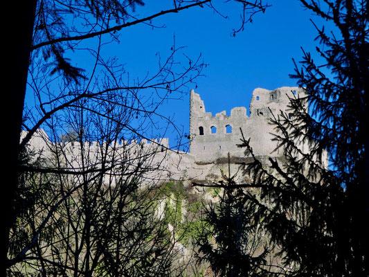 Schloss Pfeffingen