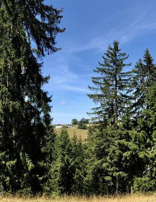 Blick über das Tal zu Chez Baptista