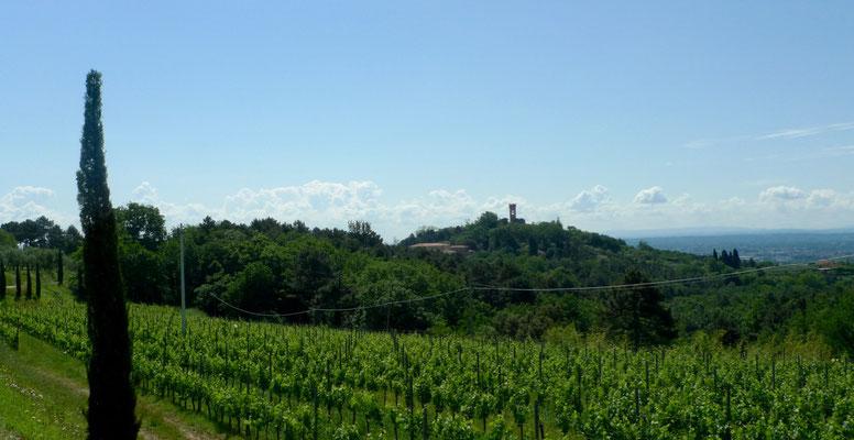 erster Blick auf Montecarlo
