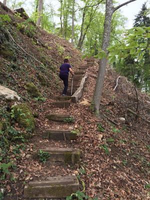 Aufstieg zur Ruine Münchsberg
