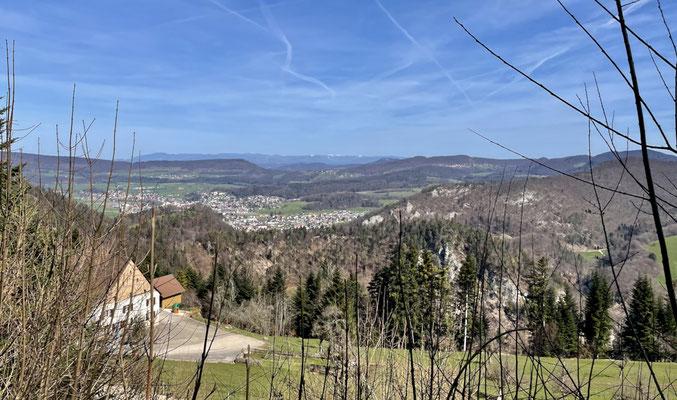 Blick vom Oberen Bergli bis zum Schwarzwald