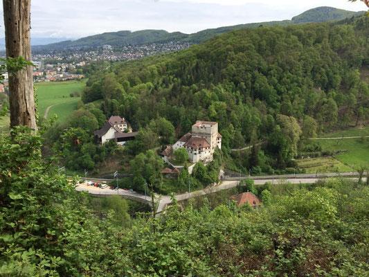 Blick auf Schloss Angenstein