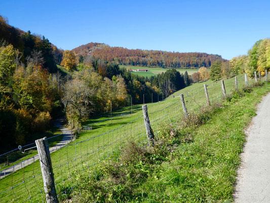 Blick zurück zum Hof Le Mont