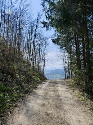 Auf dem Weg zum Kienberghof