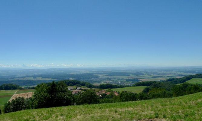 Oberhalb Wolfisberg