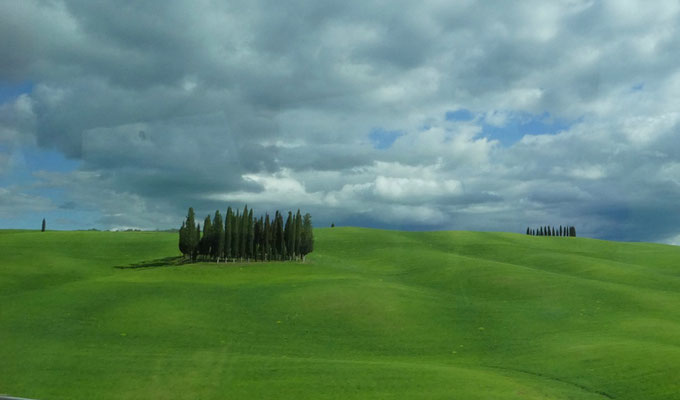 Auf dem Rückweg an den Cipressi di San Quirico d'Orcia vorbei