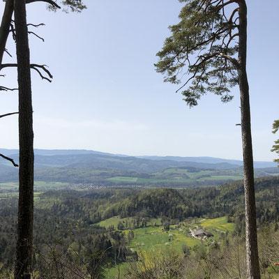 Blick auf die Bergmatten Dittingen