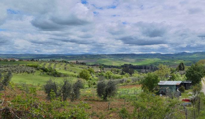 Landschaft auf dem Weg nach Bagno Vignoni